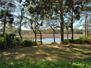 Private Dock, Pool and Spa, Tidal Views, Situated in Sea Pines Plantation, Hilton Head