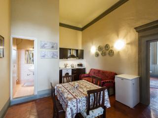 Elegant Villa Apt with view - Wifi, parking, car not necessary, bus to Florence