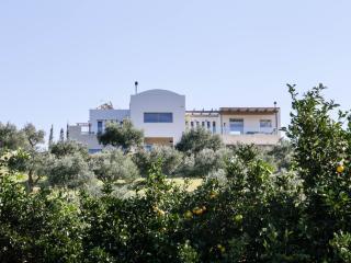 Lovely four bedroom villa with pool in lavish gardens,near sandy beach, Platanias
