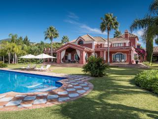 Luxury villa with pool and sauna, Drunen