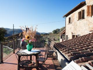 Fonte Tuscany Holiday Apartment Chianti with pond, Radda in Chianti