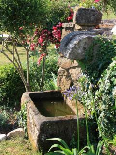 Yavanna - Main Garden