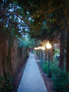 Walkways throughout the gardens