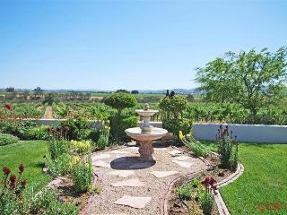 Gracious Elegance in Gorgeous Vineyard Setting, Paso Robles
