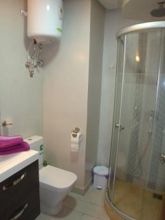 Salle de Bain entièrement équipée (serviettes de bain, sèche-cheveux, etc)