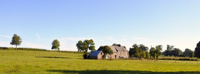 Looking towards the farmhouse from across the meadow.