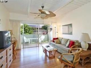Maui Studio, $75/day - $125/day: lo to hi season, Kihei