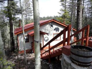 New Listing! 'Black Bear Getaway' Cozy 2BR Cloudcroft Cabin w/Wood Burning Stove & Covered Private Patio - Close to Skiing, Hiking, Ice Skating & More!