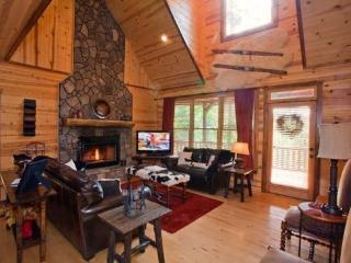 Fireside Lodge - Ellijay GA