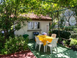 Villa Fontana -  One Bedroom Apt with Garden APT3, Cavtat