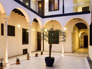 ROOMY APARTM IN XVIth MANSION, Sevilla