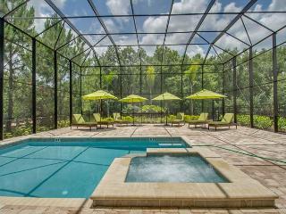 Reunion Resort Orlando/WK3387