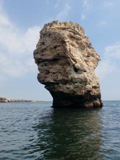 Landscape In A Boat Trip