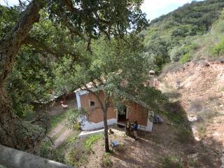 Casa da Adega, peace and quiet within Nature