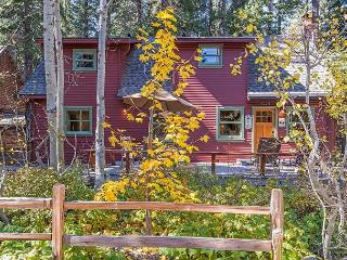 Charming 5BR Remodeled Knotty Pine cabin in Homewood