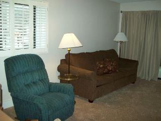 Two Bedroom Condo in Downtown Gatlinburg (Unit 112)
