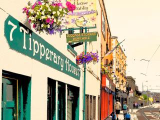 Tipperary House Dublin - Twin Room Shared Bathroom, Dublino