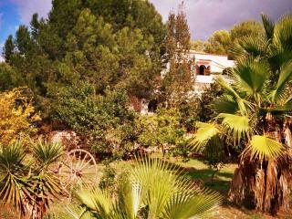 Vacaciones de verano en el corazon de Ibiza, Sant Antoni de Portmany