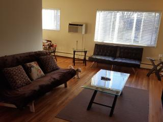 Huge 1br apt 5m to Metro Car Park, Arlington