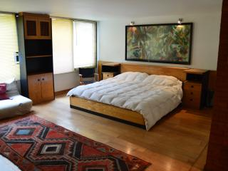 Spacious Yet Cozy Studio Apartment in El Golf, Santiago