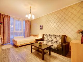 VSPB Apartment on Ligovsky, St. Petersburg