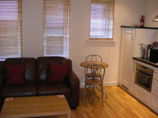 LOVELY STUDIO APARTMENT SOUTHAMPTON CITY CENTRE, Southampton