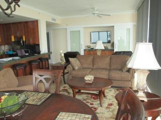 Open Living Room, Dining Room and Kitchen
