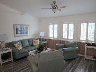 Pure Paradise, 3 Bedroom, 2 Bath, Ocean View Home, Sun Deck, Fenced Yard, Saint Augustine