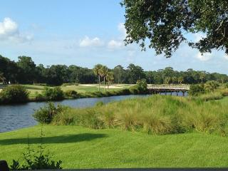 Breathtaking Views! 908 Inverness, Palmetto Dunes, Hilton Head
