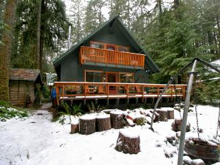 #09 Snowline Country Cabin near Mt. Baker!, Glacier