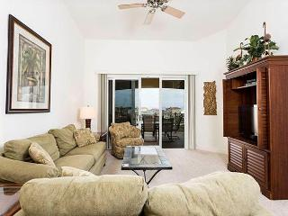 262 Cinnamon Beach, 3 Bedroom, Ocean View, 2 Pools, Pet Friendly, Sleeps 10, Palm Coast