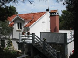 8095  A1(4+1) - Cove Osibova (Milna)