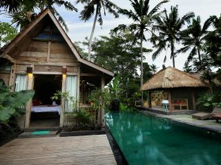 UBUD PRIVAT VILLA SWIMMING POOL