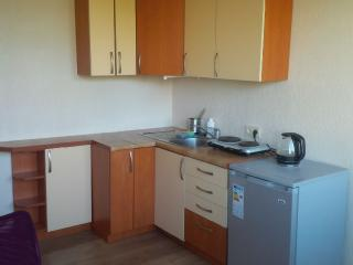 Friendly Studio apartment, Druskininkai