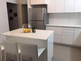 Furnished & Newly Renovated Apartment, Toronto