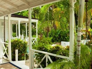One And A Half Acres Of Lush Tropical Gardens, Port Orange