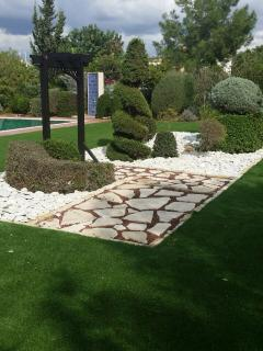 Mature professionally designed garden