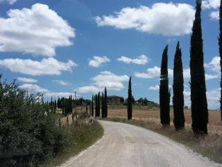 L'agriturismo Bellavista, Asciano