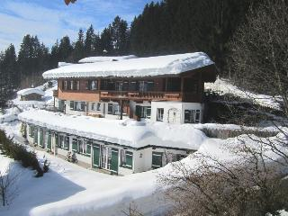 House Meixner in Reith/Kitzbuhel, Reith bei Kitzbuehel