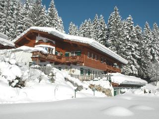 House Meixner in Reith/Kitzbuhel, Reith bei Kitzbuehel