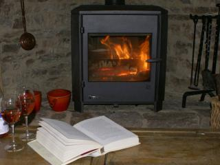 Wood burner for cooler evenings and winter visits