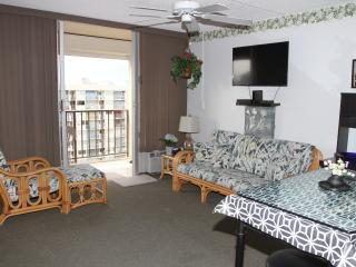 NEW, COMPLETELY REMODELED 24TH FLOOR DELUXE STUDIO - 2 blocks to beach
