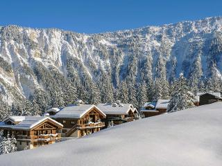 Chalet Chamois, Sleeps 14, Saint-Bon-Tarentaise