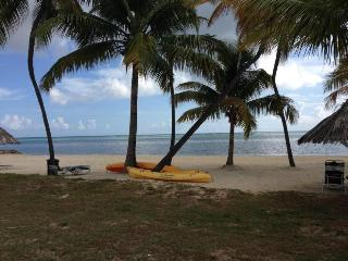 Escape to the Caribbean! Beachfront Condo