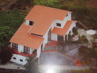Gina's.Village -AL/ Spacious rooms / Wi-Fi Free, Ribeira Brava