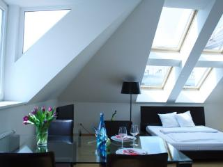 Penthouse in the center of Vienna!, Viena