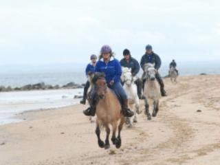 Horse riding is available locally