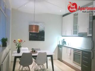 Lux Apartment with Rental Car included in Reykjavik Centre - 7033
