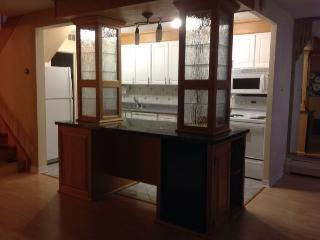 Furnished & Outfitted, near downtown Ottawa
