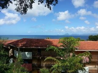 Studio belle vue mer des Caraibes